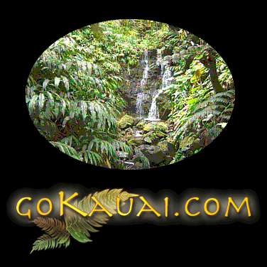 Images © Ali'i Enterprises & County of Kaua'i