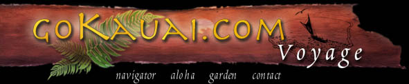 Welcome to the Voyage - Go Kauai Adventures